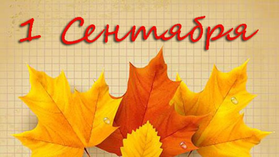 http://98mdou.ru/assets/cache/images/news/900x-den_znaniy.1a7.jpg